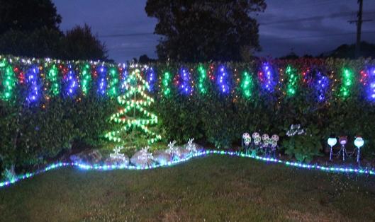 Chrissy lights