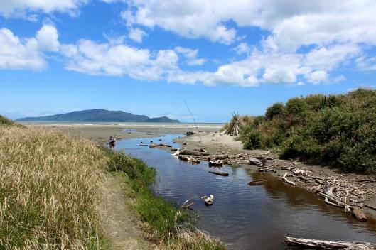 Te Kowhai stream