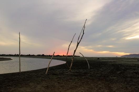 Waiky Scientific Reserve Twilight