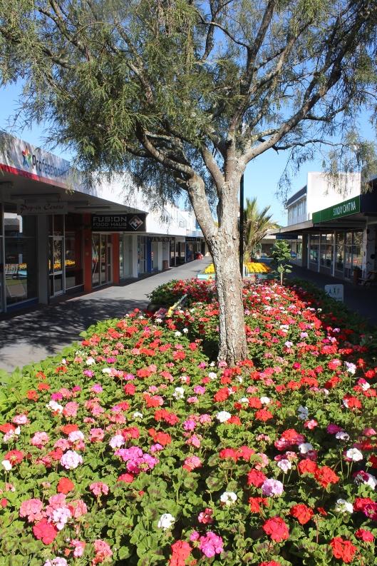 Mahara Lane fleuri