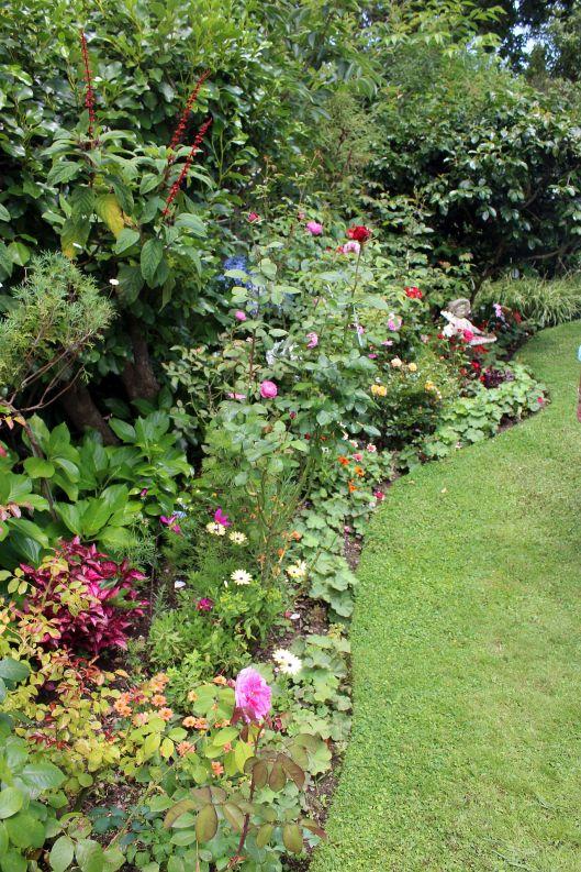 Ngarara Jardin 1