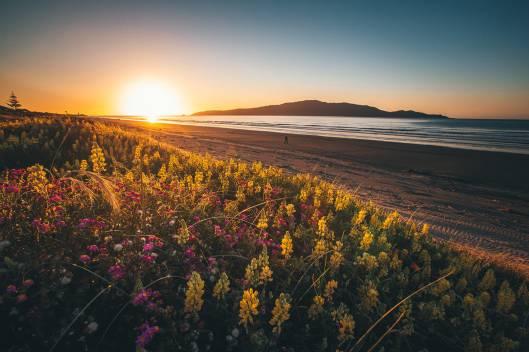 Waikanae beach sunset by Brian Campbell
