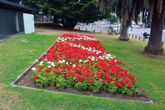 loo fleurs