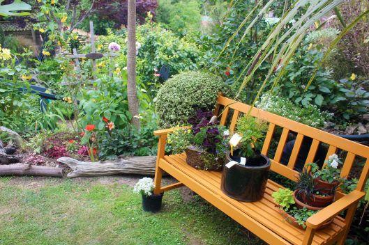 Seddon garden