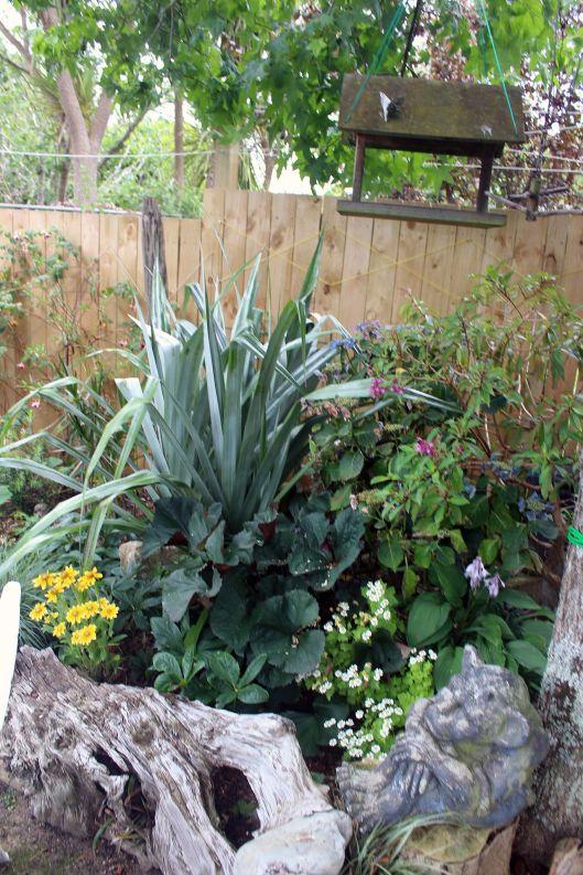 Huia Garden 1
