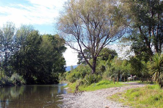 River vue Otaihanga