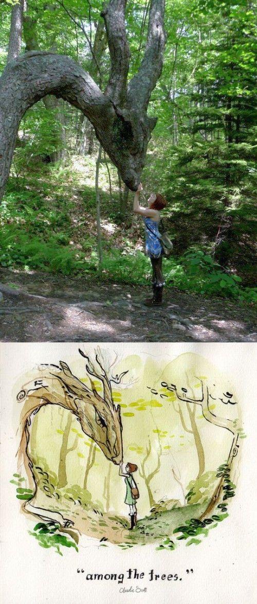 tree shape