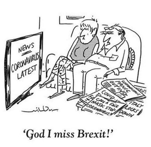Virus versus Brexit