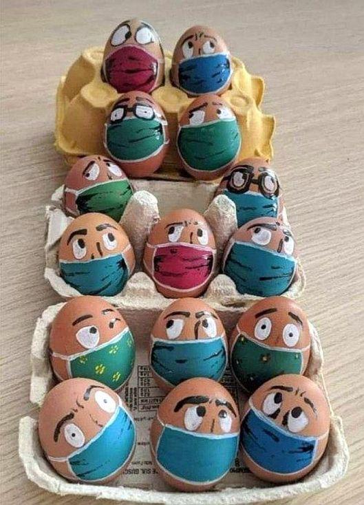 cv eggs