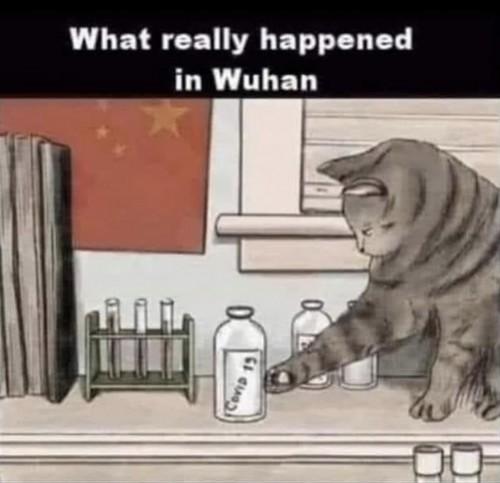 cv wuhan