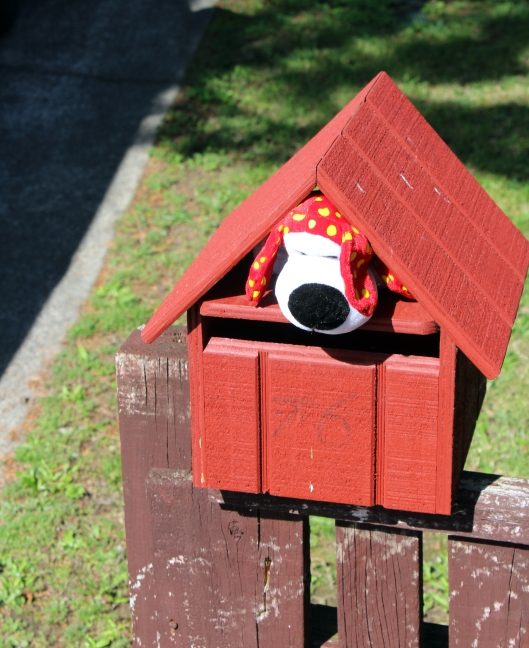 snoopy in mailbox