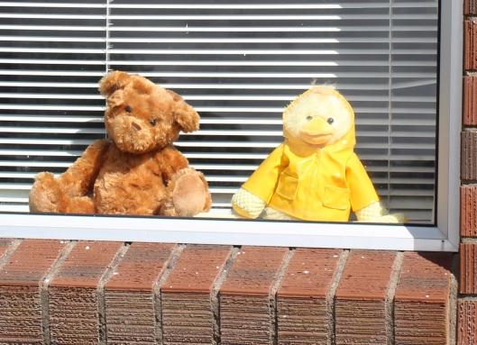 teddy and ducky