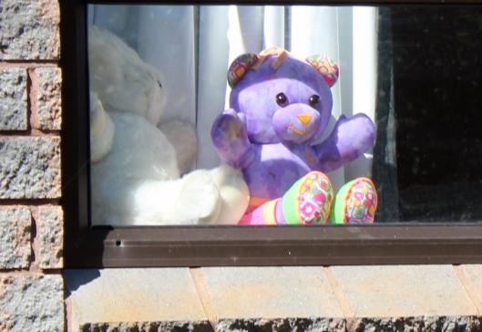 teddy poiple