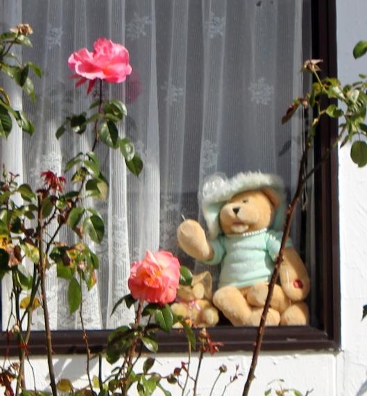 teddyess