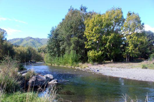 Waikanae River April sun