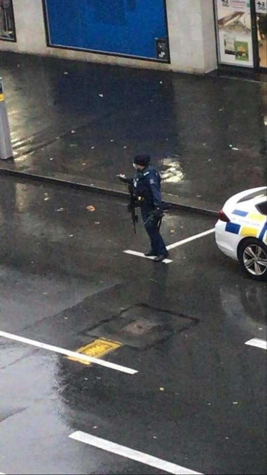 Cop with assault rifle Welly