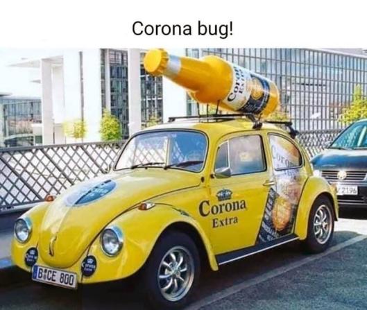 cv Corona Bug