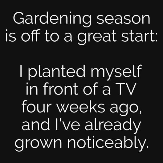 cv gardening