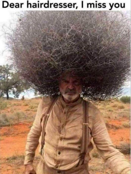 cv hairdresser