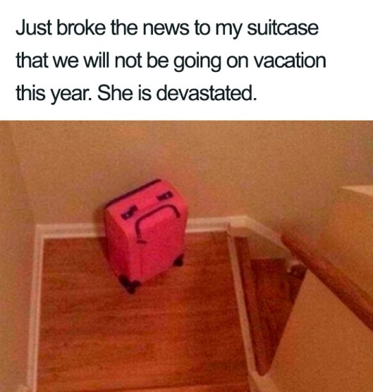 cv suitcase