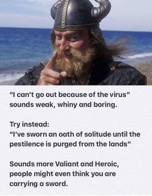 cv viking