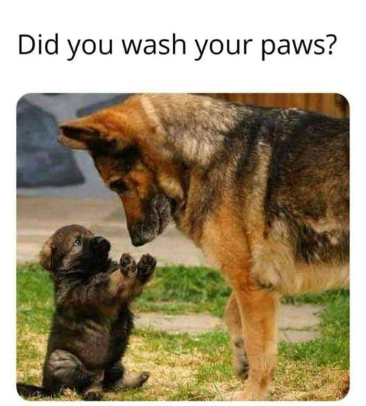 cv wash