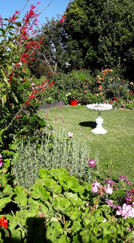 jardin scene