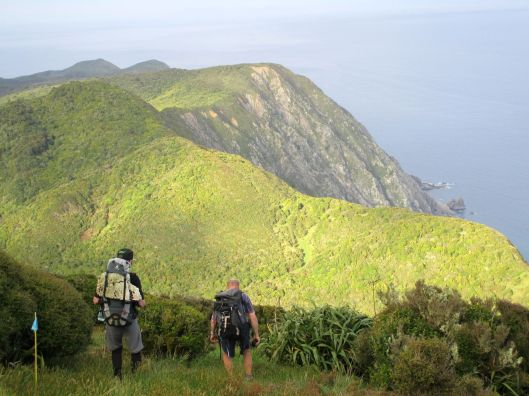 Kapiti Island 1