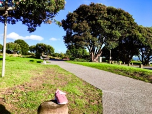 maclean-park-gateway-site-2