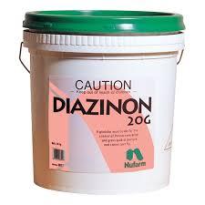 Dianzinon