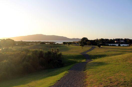 Estuary path evening