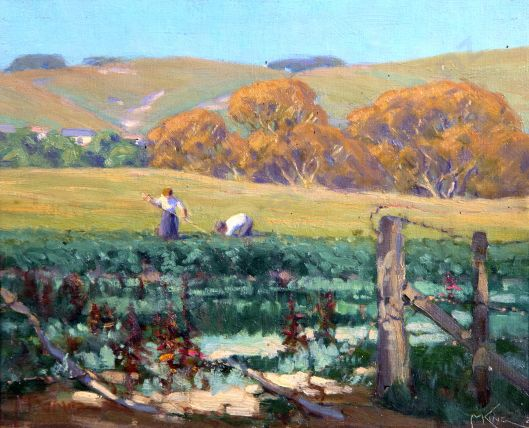 Tending the fields north of Waikanae Marcus King