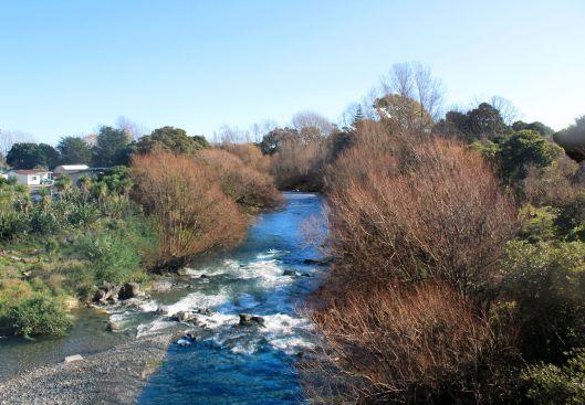 Waiky River Rapids