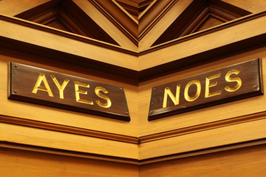 ayes-and-noes