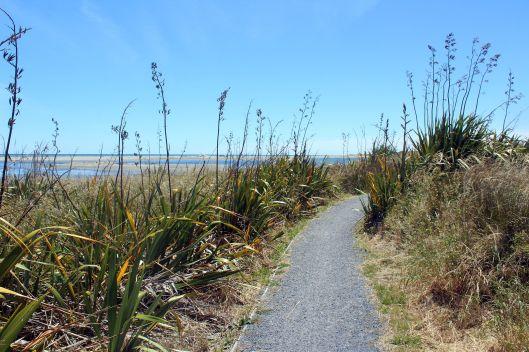 Estuary path