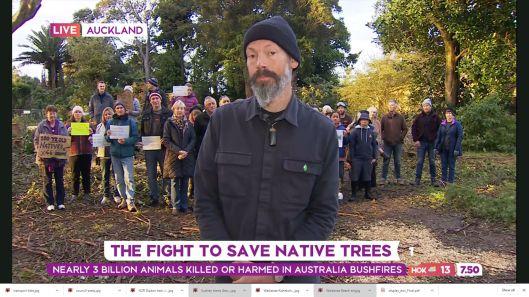 Native tree destruction