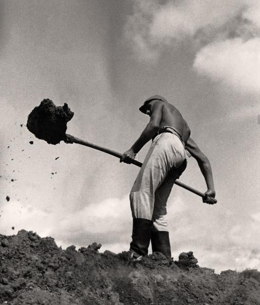 Shovels in work