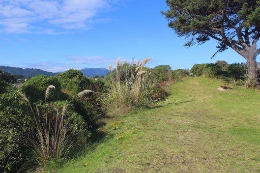 Waimeha Reserve vue