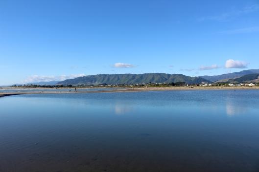 Estuary wasser