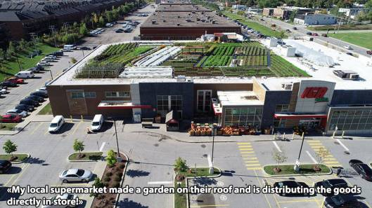 supermarket roof garden