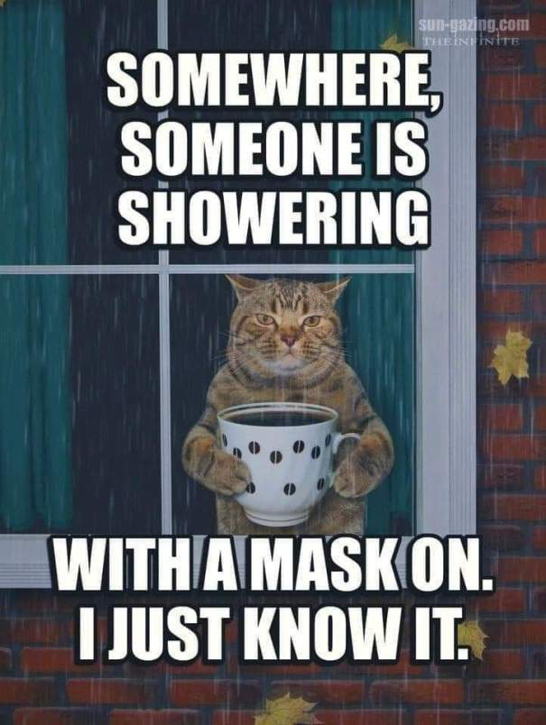Mask shower
