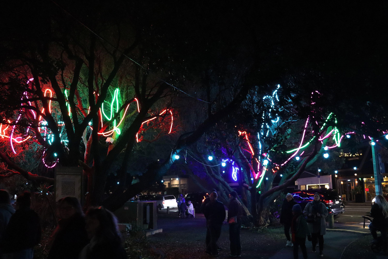 Matariki tree lights